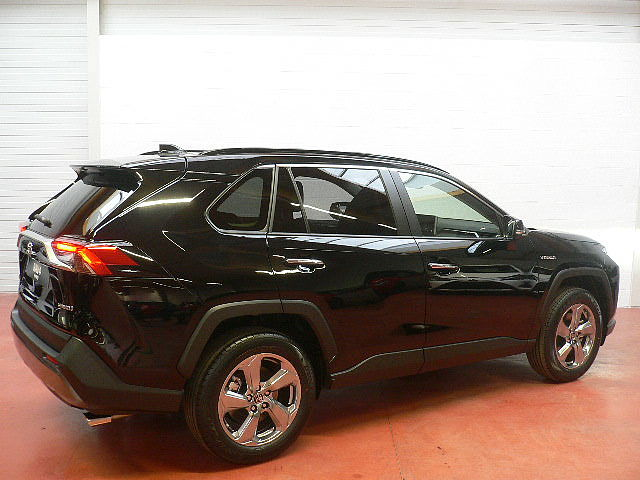 Toyota RAV-4 2.5 Hybrid AWD e-CVT - photo 11